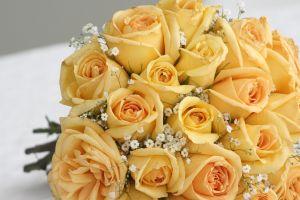 Bukiet żółtych róż